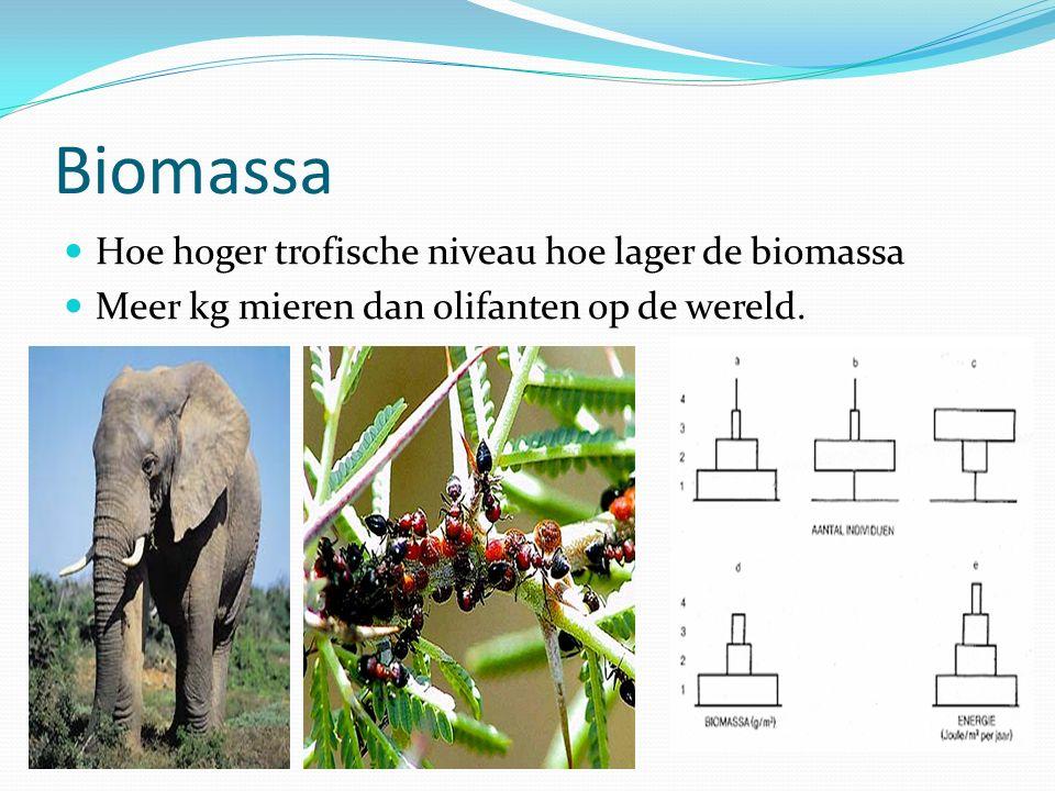 Biomassa Hoe hoger trofische niveau hoe lager de biomassa