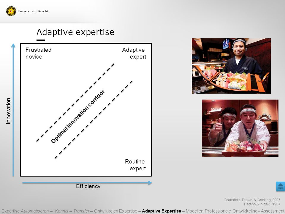 Adaptive expertise Frustrated Adaptive novice expert