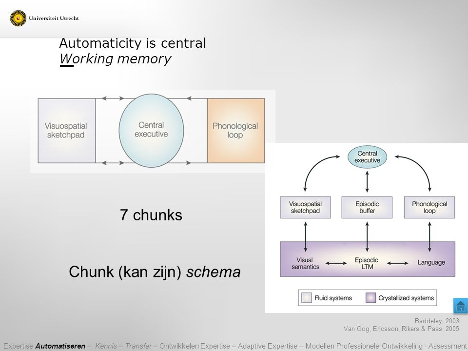 Automaticity is central Working memory
