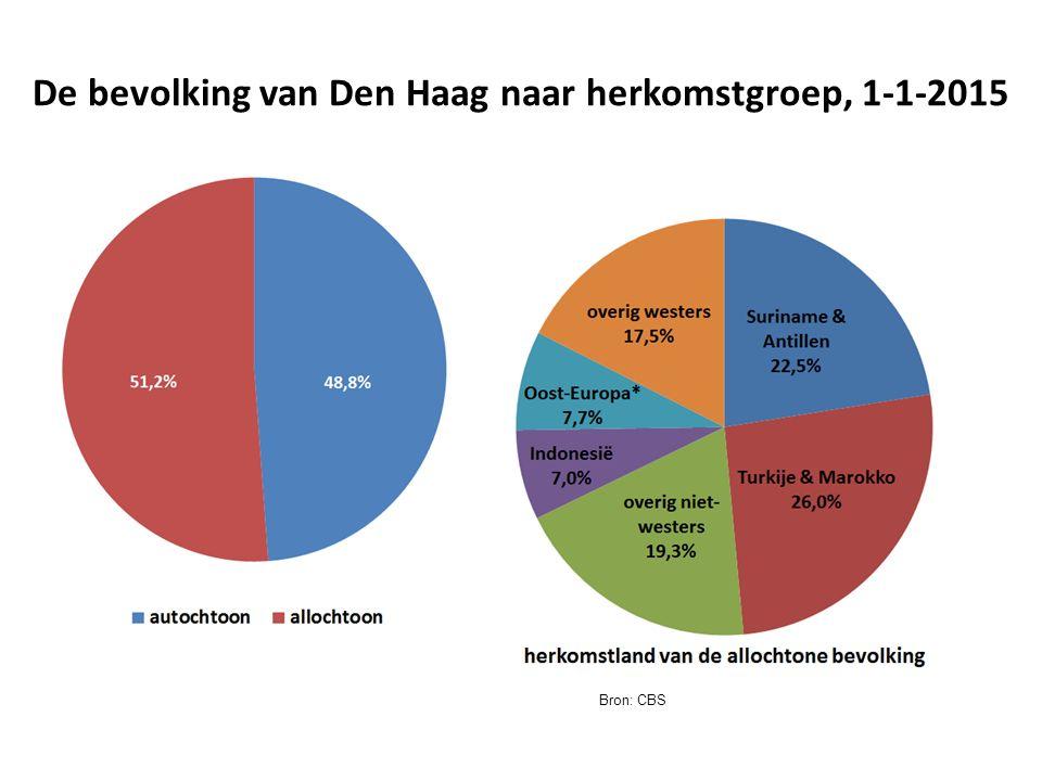 De bevolking van Den Haag naar herkomstgroep, 1-1-2015