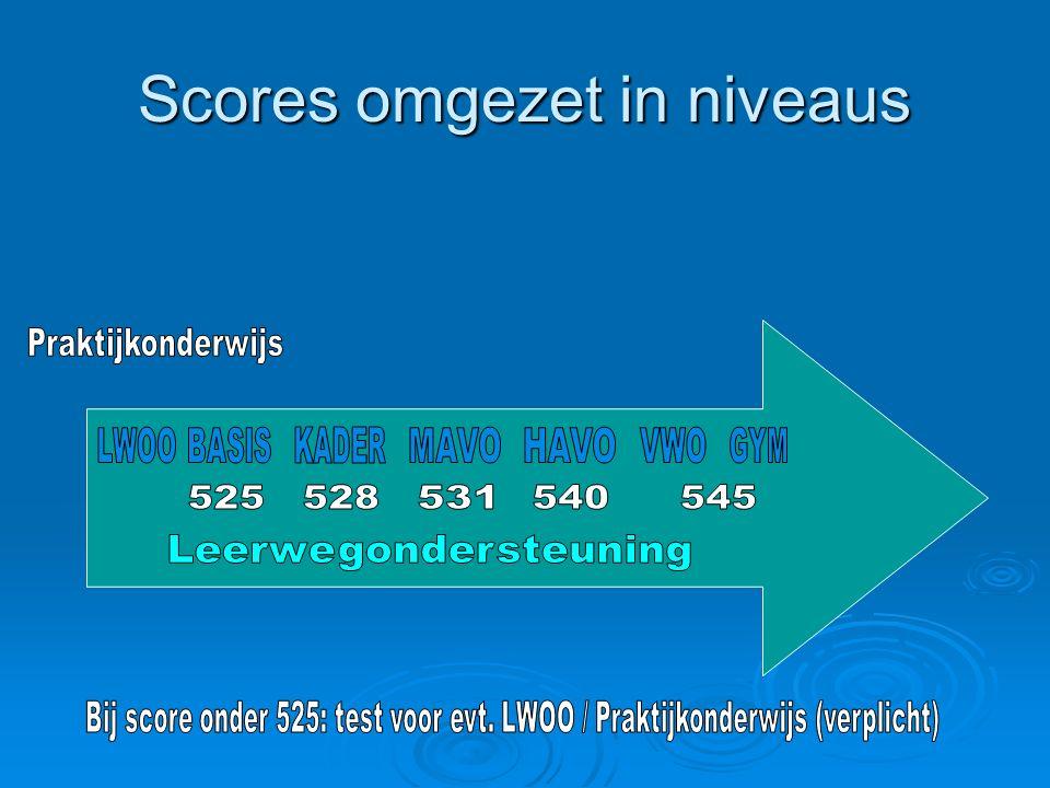 Scores omgezet in niveaus