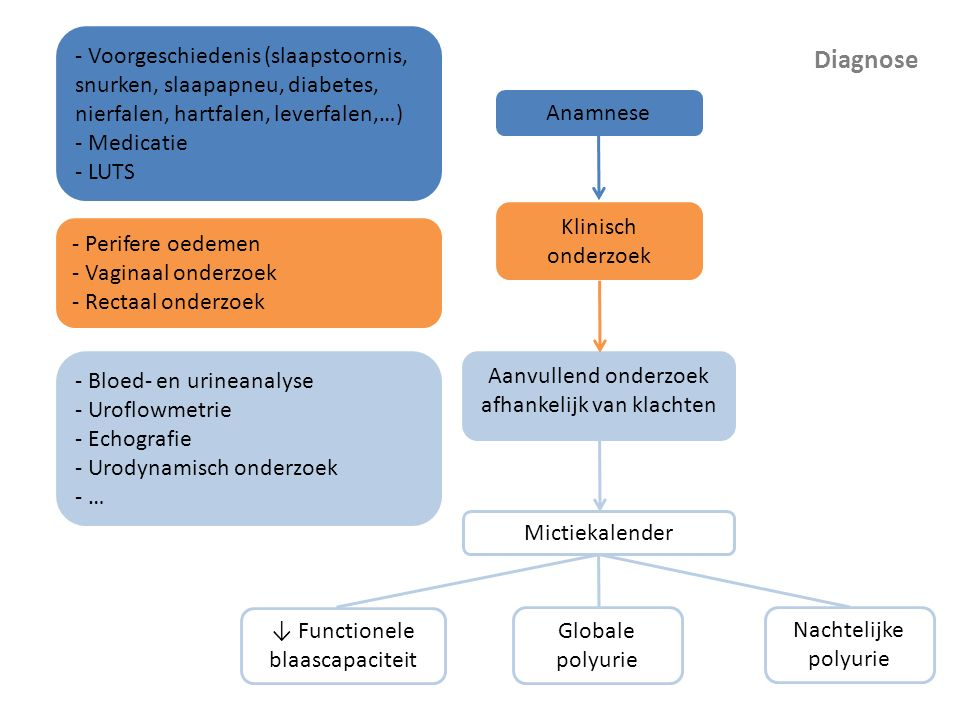 Anamnese - Voorgeschiedenis (slaapstoornis, snurken, slaapapneu, diabetes, nierfalen, hartfalen, leverfalen,…)