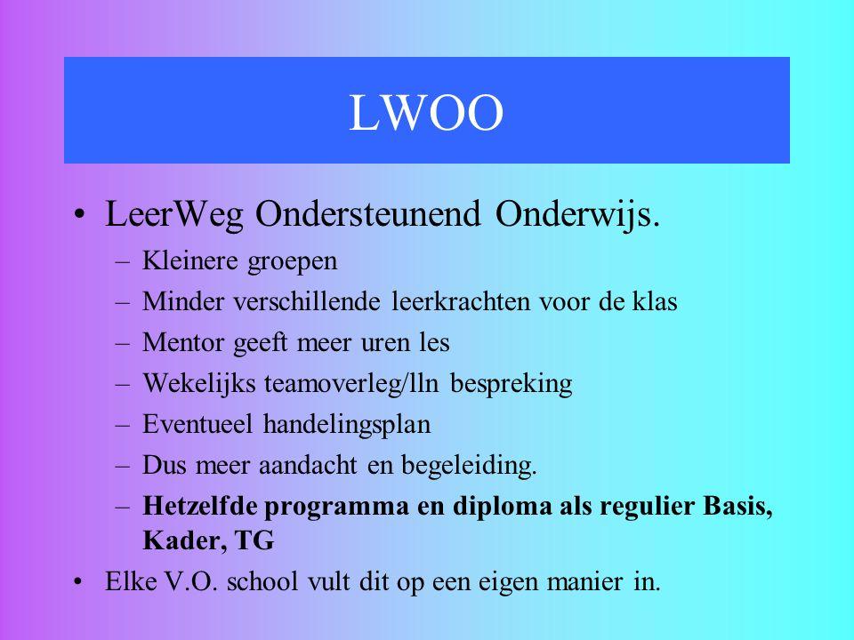 LWOO LeerWeg Ondersteunend Onderwijs. Kleinere groepen