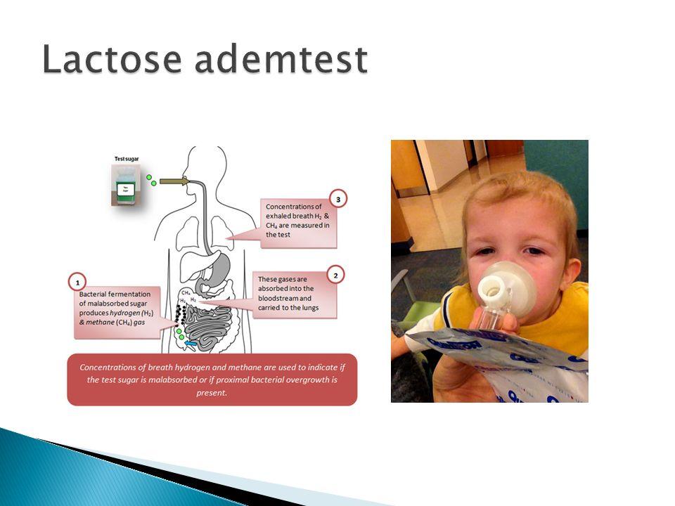 Lactose ademtest