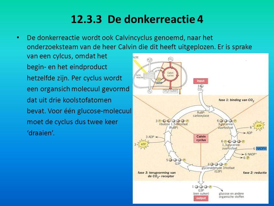 12.3.3 De donkerreactie 4