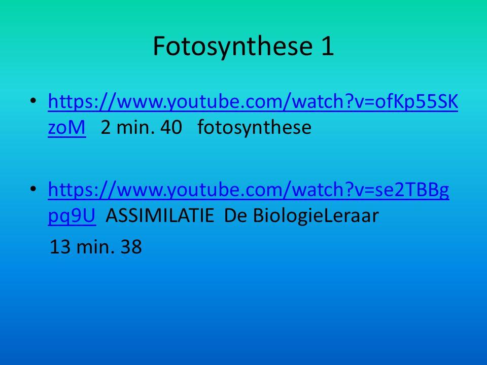 Fotosynthese 1 https://www.youtube.com/watch v=ofKp55SKzoM 2 min. 40 fotosynthese.