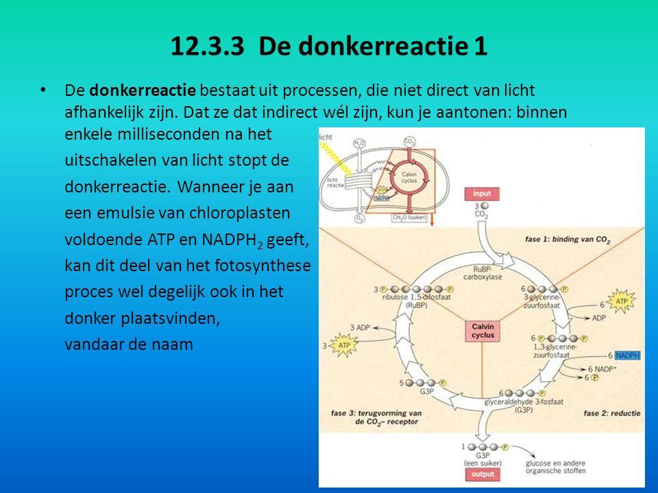 12.3.3 De donkerreactie 1