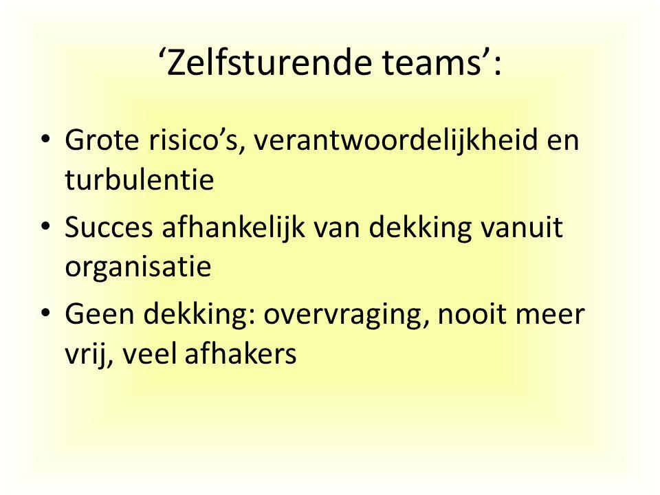 'Zelfsturende teams':