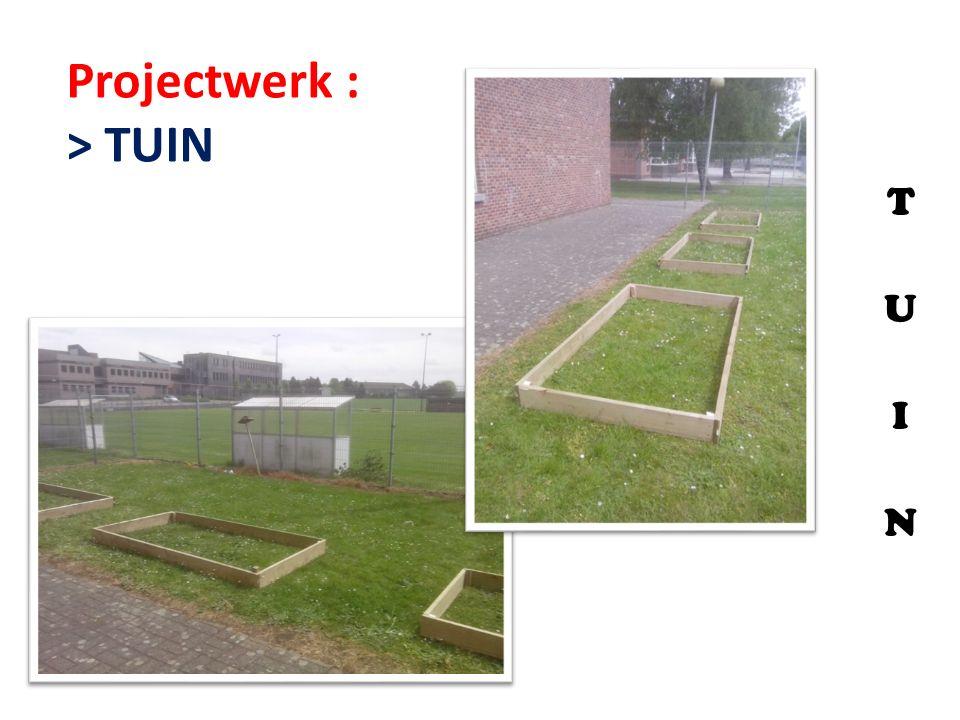 T U I N Projectwerk : > TUIN