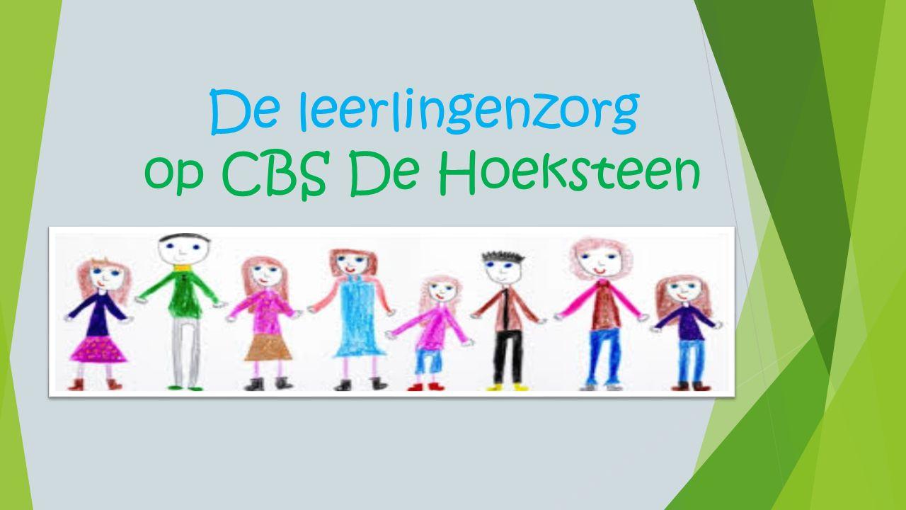 De leerlingenzorg op CBS De Hoeksteen