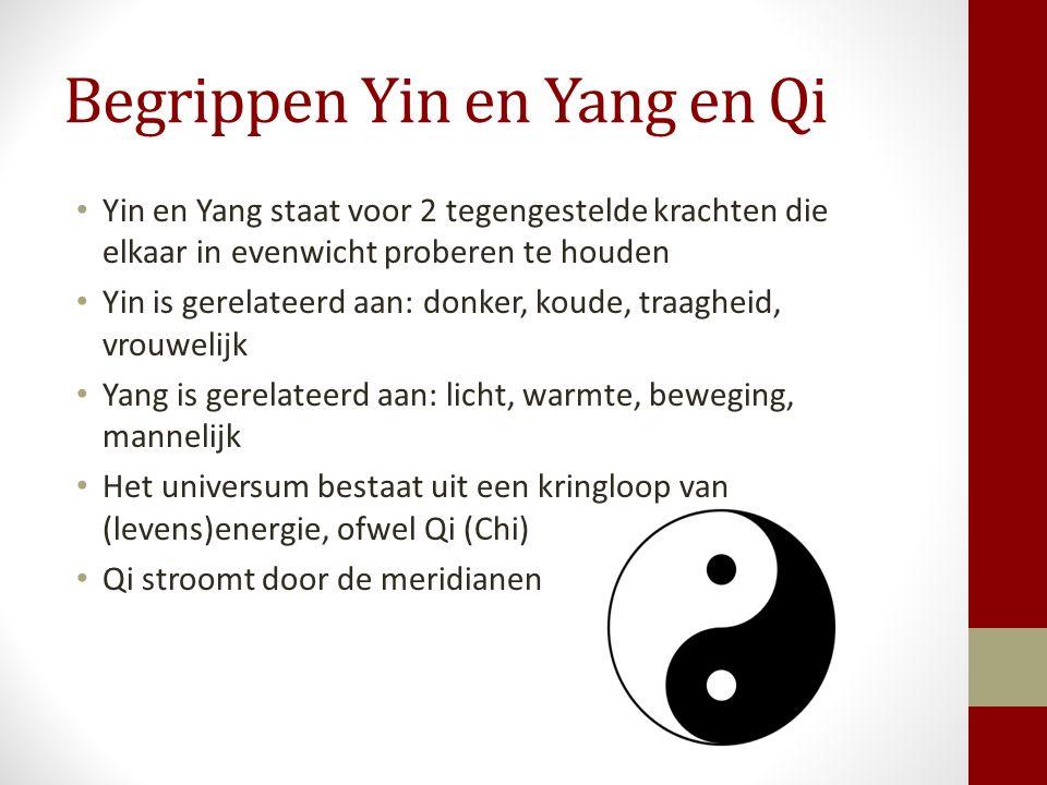 Begrippen Yin en Yang en Qi