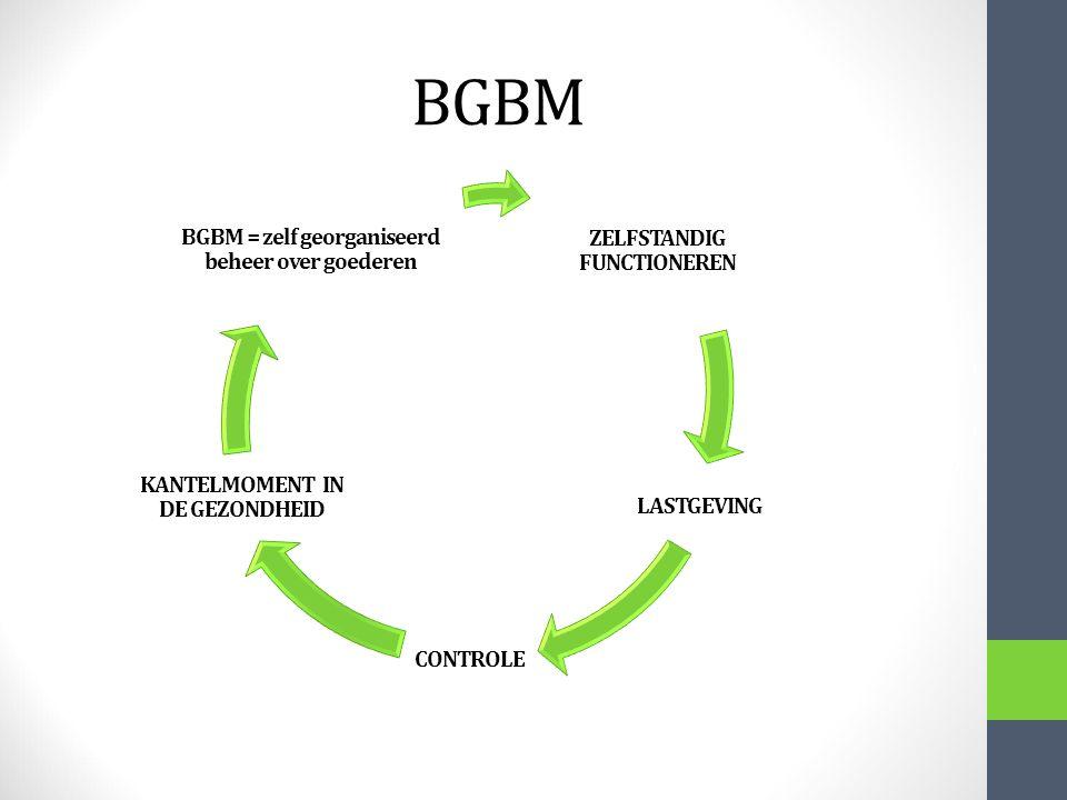 BGBM BGBM = zelf georganiseerd beheer over goederen