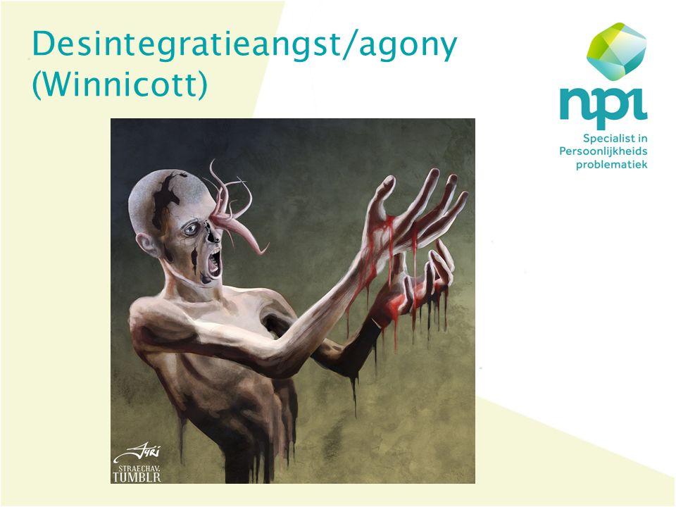 Desintegratieangst/agony (Winnicott)