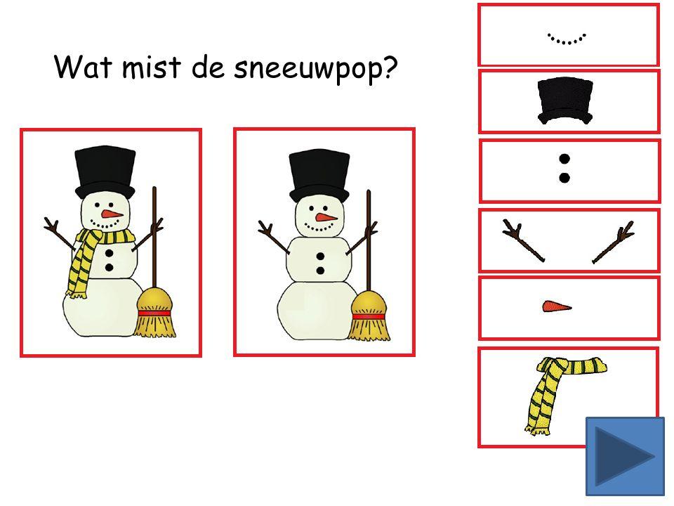 Wat mist de sneeuwpop