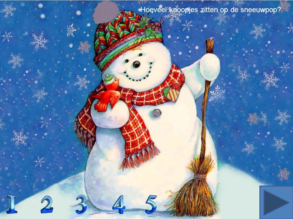 Hoeveel knoopjes zitten op de sneeuwpop