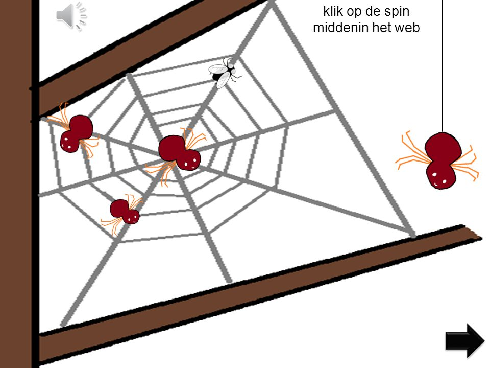 klik op de spin middenin het web