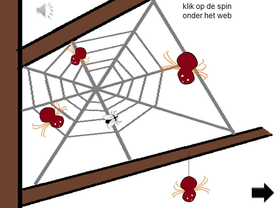 klik op de spin onder het web