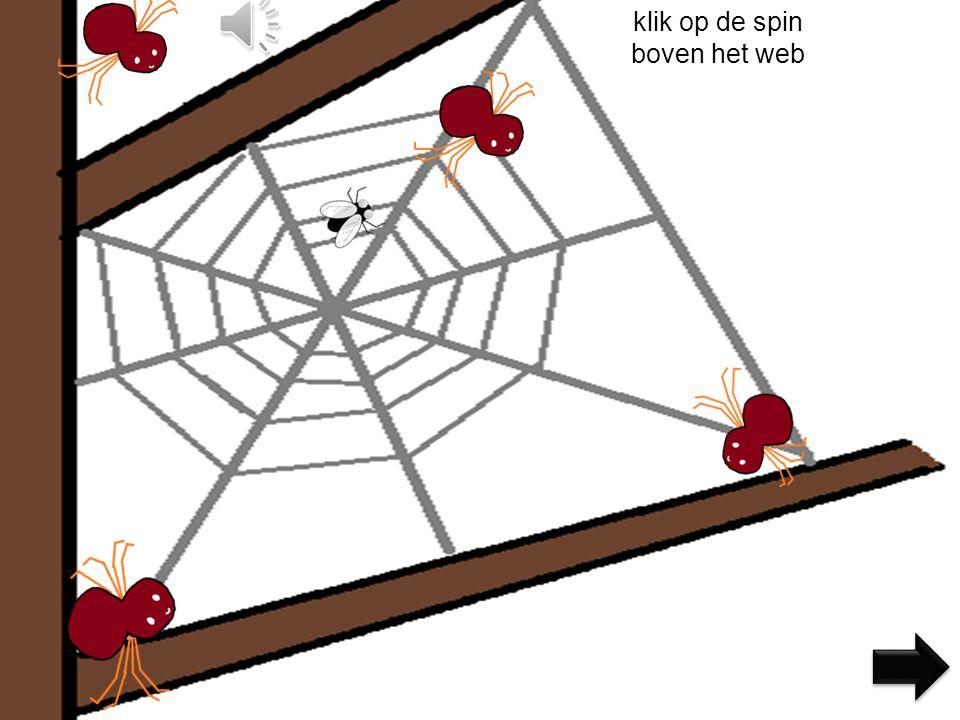 klik op de spin boven het web