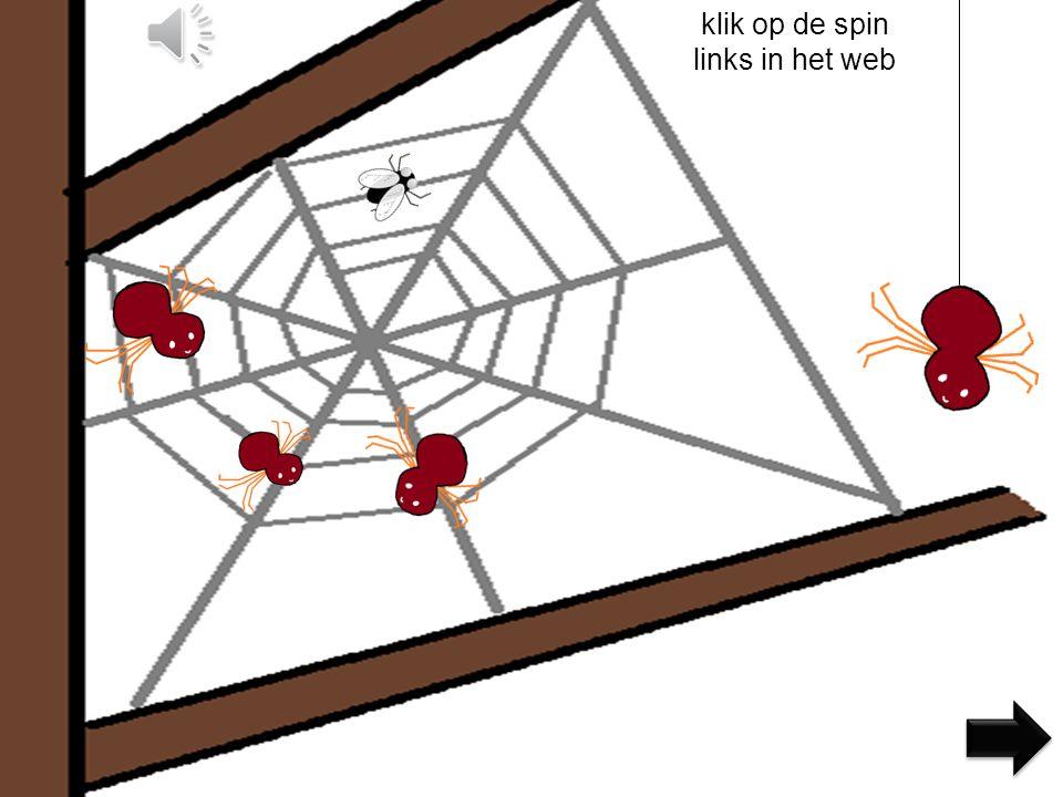 klik op de spin links in het web