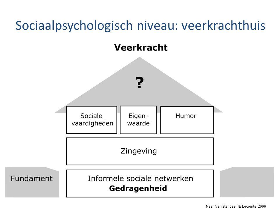 Sociaalpsychologisch niveau: veerkrachthuis