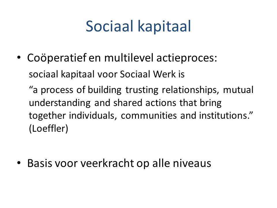Sociaal kapitaal Coöperatief en multilevel actieproces: