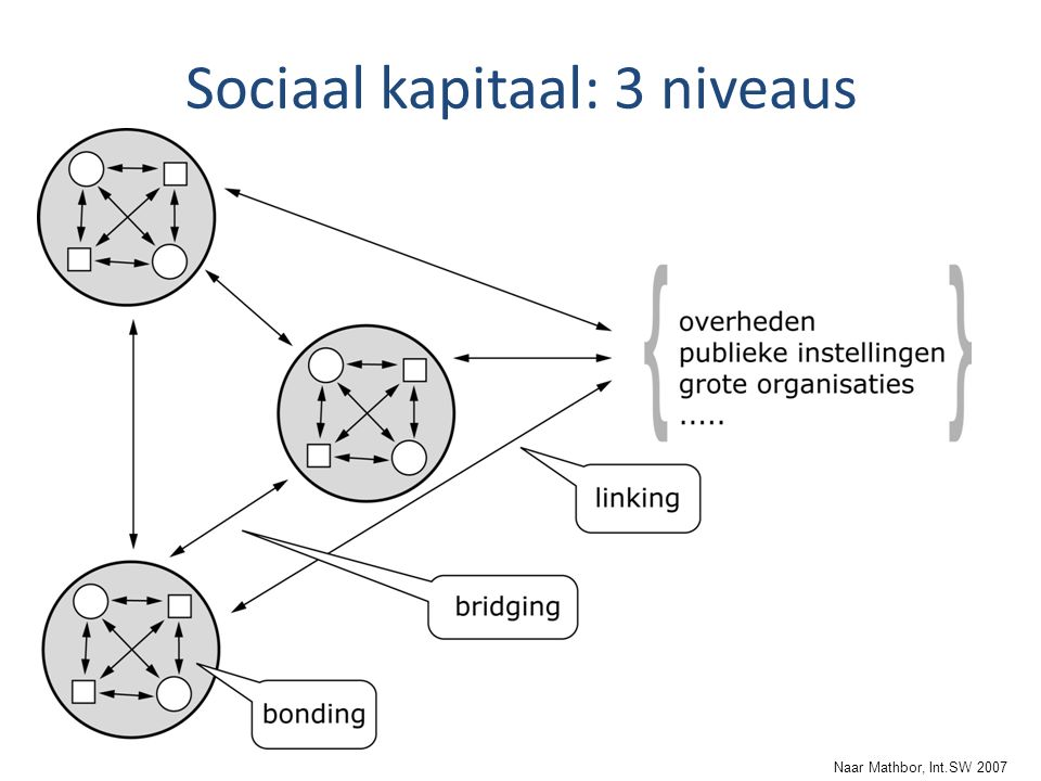 Sociaal kapitaal: 3 niveaus