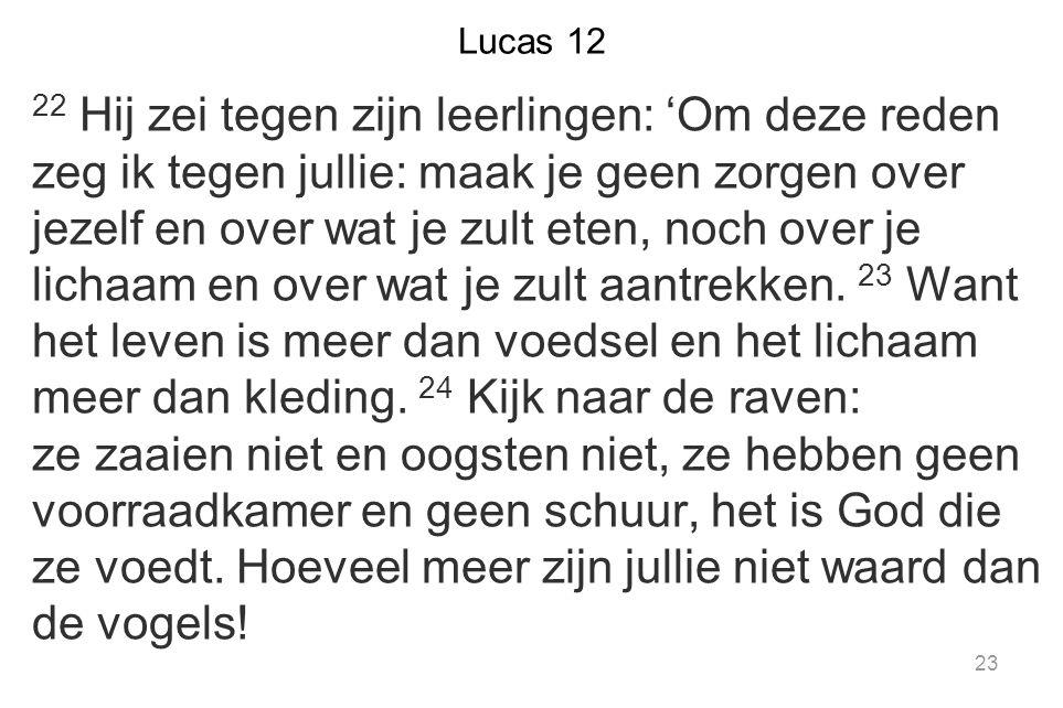Lucas 12