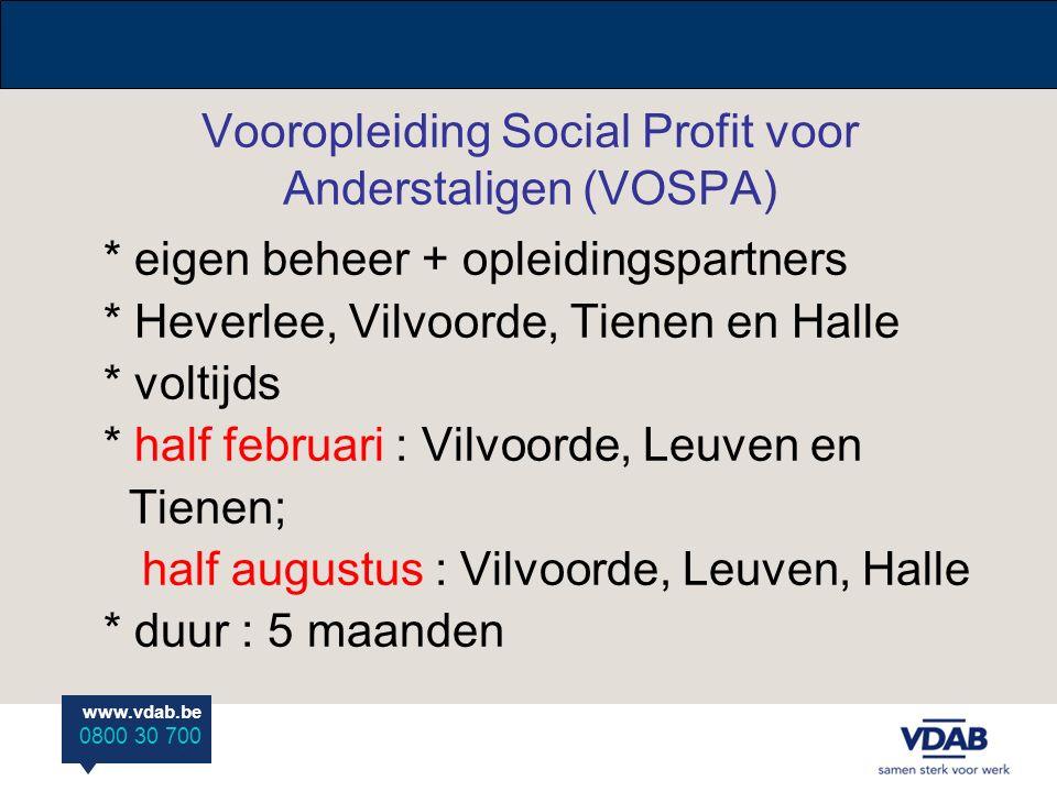Vooropleiding Social Profit voor Anderstaligen (VOSPA)