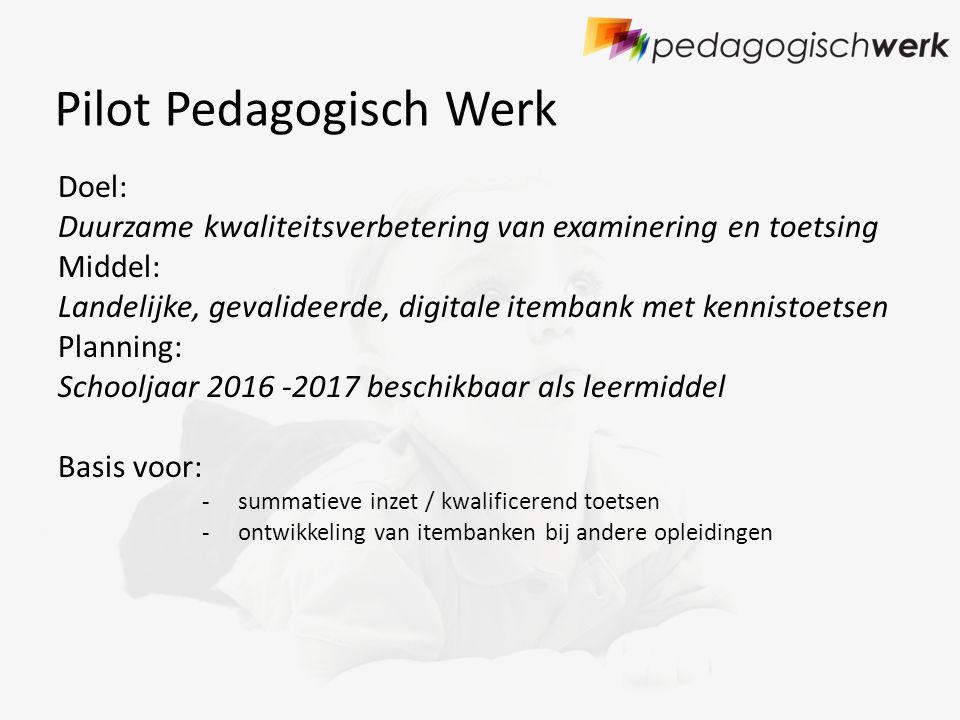 Pilot Pedagogisch Werk