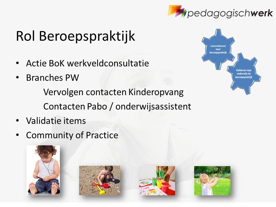 Rol Beroepspraktijk Actie BoK werkveldconsultatie Branches PW