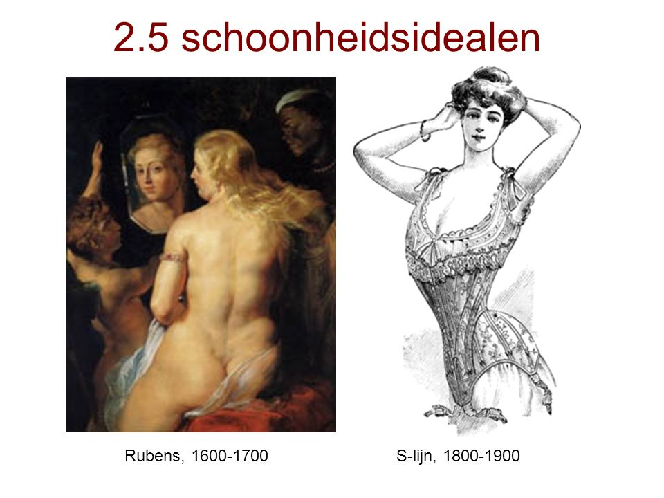 2.5 schoonheidsidealen Rubens, 1600-1700 S-lijn, 1800-1900