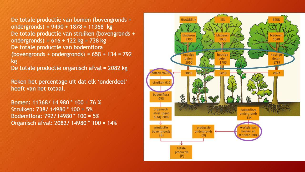 De totale productie van bomen (bovengronds + ondergronds) = 9490 + 1878 = 11368 kg