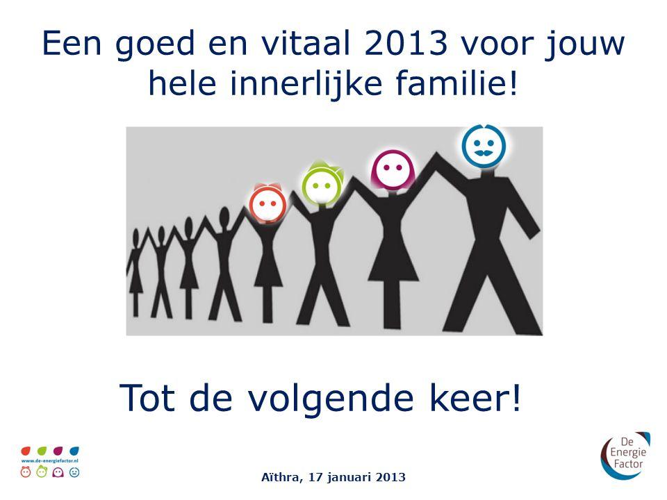 Een goed en vitaal 2013 voor jouw hele innerlijke familie!