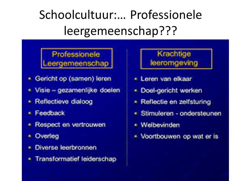 Schoolcultuur:… Professionele leergemeenschap