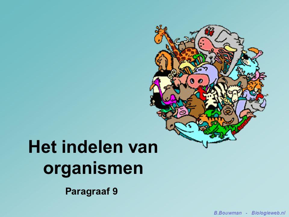 Het indelen van organismen