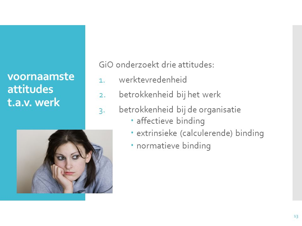 voornaamste attitudes t.a.v. werk
