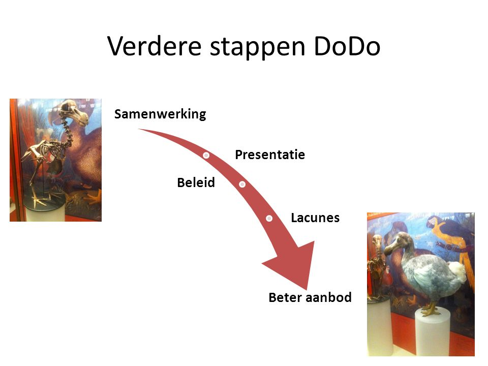 Verdere stappen DoDo Samenwerking Presentatie Beleid Lacunes