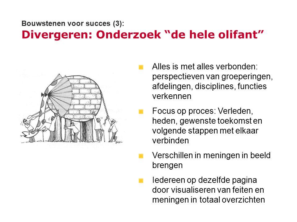 Bouwstenen voor succes (3): Divergeren: Onderzoek de hele olifant