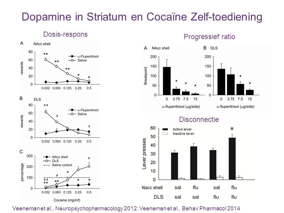 Dopamine in Striatum en Cocaïne Zelf-toediening