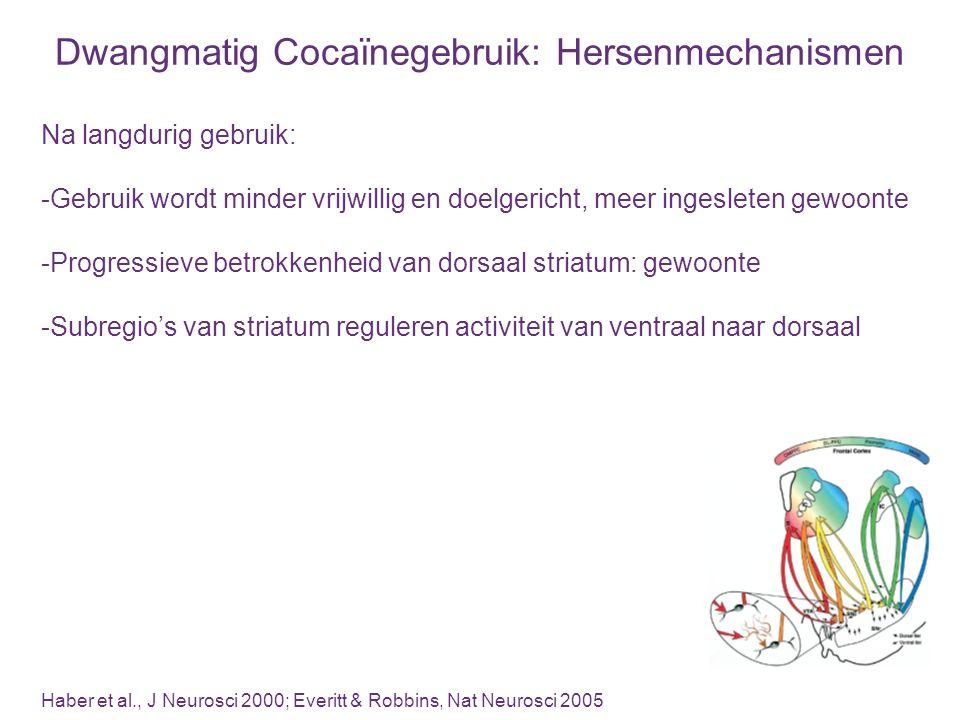 Dwangmatig Cocaïnegebruik: Hersenmechanismen