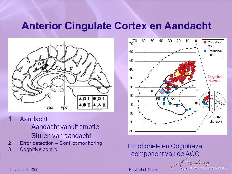 Anterior Cingulate Cortex en Aandacht