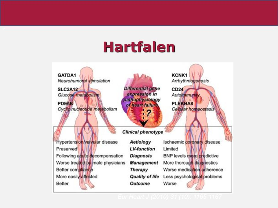 Hartfalen Eur Heart J (2010) 31 (10): 1165-1167