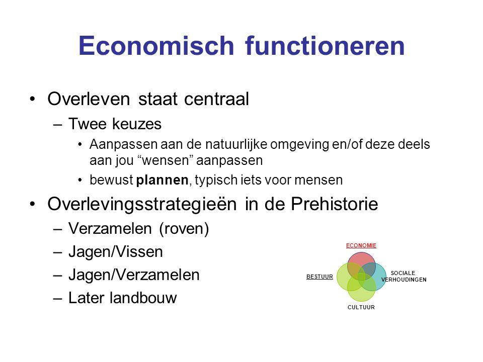 Economisch functioneren