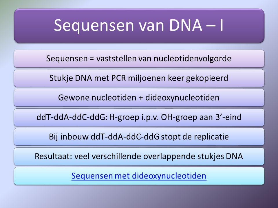 Sequensen van DNA – I Sequensen = vaststellen van nucleotidenvolgorde