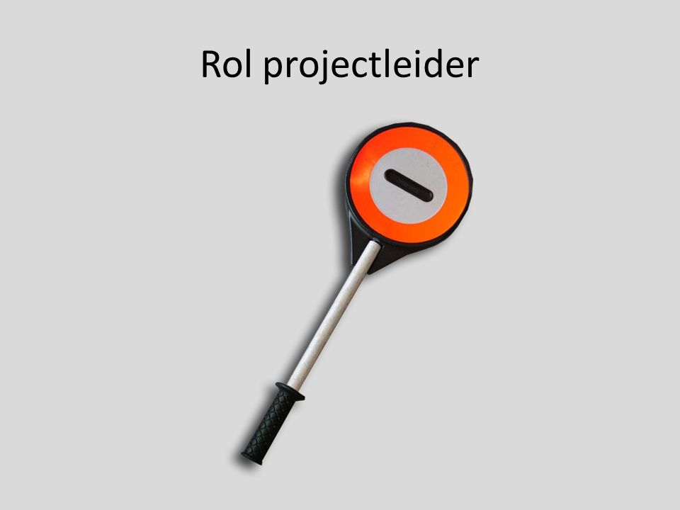 Rol projectleider