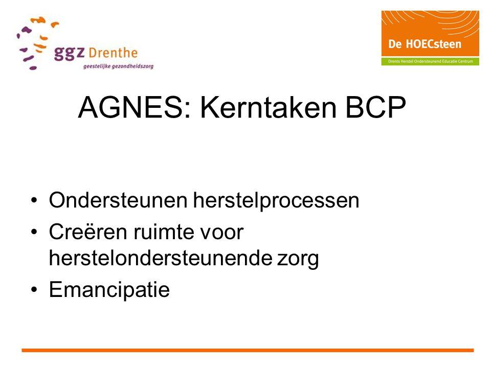 AGNES: Kerntaken BCP Ondersteunen herstelprocessen