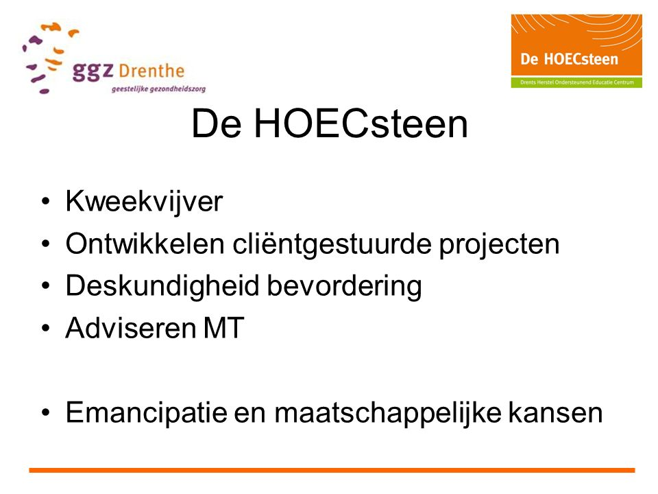 De HOECsteen Kweekvijver Ontwikkelen cliëntgestuurde projecten