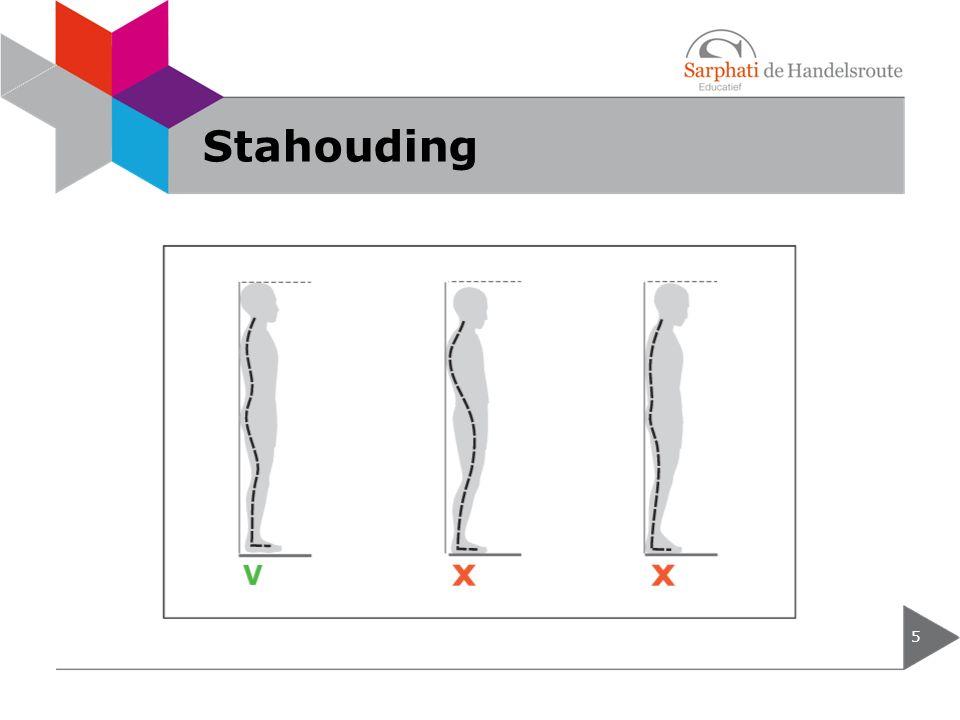 Stahouding