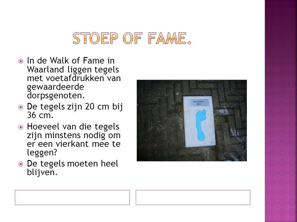 Stoep of fame. In de Walk of Fame in Waarland liggen tegels met voetafdrukken van gewaardeerde dorpsgenoten.