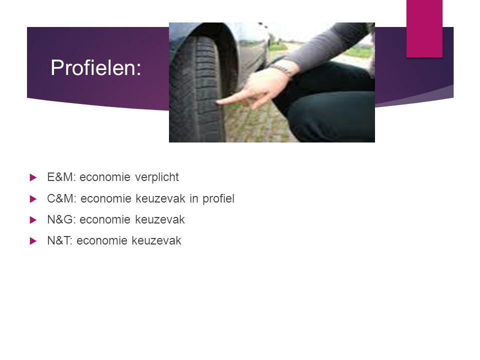 Profielen: E&M: economie verplicht C&M: economie keuzevak in profiel